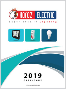 HOROZ ELECTRIC 2019