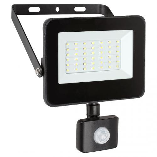 RABALUX - LED прожектор със сензор FLOOD 7068 LED 30W 2700lm 4000K IP44