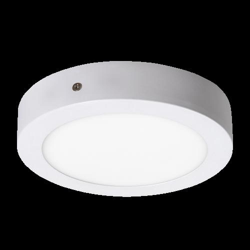 RABALUX - LED Панел кръгъл Lois 2655 12W 4000K бял