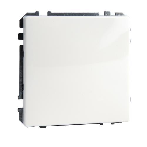 SCHNEIDER ELECTRIC - MTN391919 Blanking cover, polar white Antique
