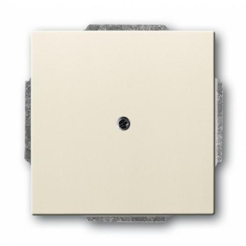 ABB - Твърда връзка без клеми ABB Basic55 крем 2CKA001710A3773