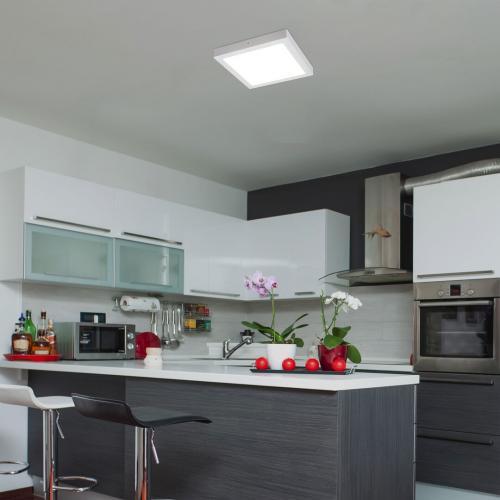 RABALUX - LED Панел квадратен  LOIS 2665  LED / 24W, 1700lm, 4000K, 300x300mm